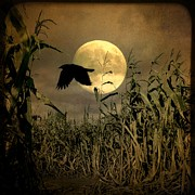 Corn Stalks Art - Autumn Moon by Gothicolors With Crows