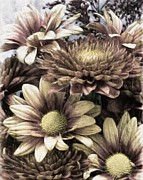 Melissa Bittinger - Autumn Mum Bouquet