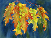 Yellow Leaves Painting Prints - Autumn Oak Leaves  on Dark Blue Background Print by Sharon Freeman