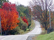 Annapolis Valley Posters - Autumn On A Country Road Poster by Janet Ashworth
