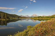Fall Photographs Posters - Autumn On Oxbow Bend - Mount Moran - Grand Teton National Park Wyoming Poster by Brian Harig