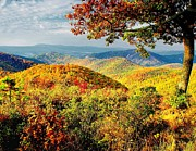 Scenic Drive Prints - Autumn on Skyline Drive Print by Nick Zelinsky