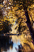 Autumn On The Applegate Print by Melanie Lankford Photography