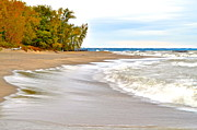 Excellence Prints - Autumn on the Beach Print by Robert Harmon