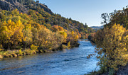 Autumn Leaf On Water Photos - Autumn on the Klamath River by Loree Johnson
