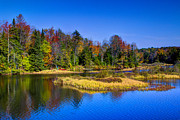 Adirondacks Photo Posters - Autumn on the Moose River Poster by David Patterson