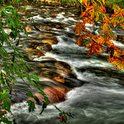 Autumn Colours Posters - Autumn on the River Poster by Randy Hall