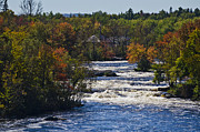 Roger Lewis Metal Prints - Autumn on the River Metal Print by Roger Lewis