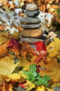 Cairn Prints - Autumn On The Rocks 2 Print by Donna Kennedy