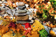 Cairn Prints - Autumn On The Rocks Print by Donna Kennedy