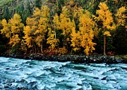 Leavenworth Photos - Autumn on the Wenatchee by Benjamin Yeager