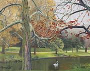 Barbara Barber - Autumn on Town Pond
