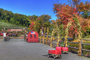 New England Farm Photos - Autumn Orchard by Joann Vitali