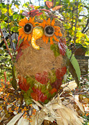 Nan Wright - Autumn Owl