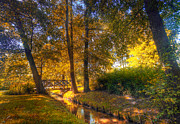 Golden Art - Autumn park by Michal Bednarek