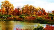 Autumn Landscape Pyrography Prints - Autumn Pond Print by P Dwain Morris