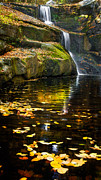 Granby Prints - Autumn Pool Print by Bill  Wakeley