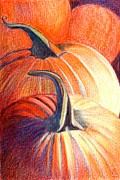 Pumpkins Paintings - Autumn Pumpkins by Stephanie L Carr