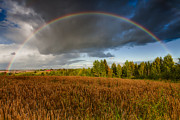 Country Road. Rural Posters - Autumn Rainbow Poster by Erik Brede