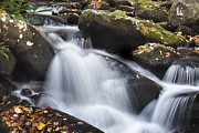 Tennessee Metal Prints - Autumn Rapids Metal Print by Andrew Soundarajan
