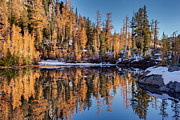 Alpine Prints - Autumn Reflected Print by Mike Reid