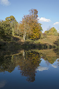 Steev Stamford - Autumn reflected