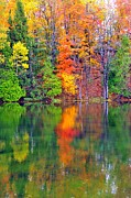 Fall Trees Prints - Autumn Reflecting in Still Waters Print by Terri Gostola