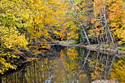 """autumn Reflection"" Photos - Autumn Reflecting by Robert Harmon"