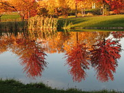 Muscatine Photos - Autumn Reflection by Karen Waller