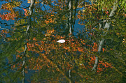 Kathy Rinker - Autumn Reflection