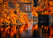 Water Reflections Metal Prints - Autumn Reflections  Metal Print by Bob Orsillo