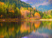 Tara Turner Framed Prints - Autumn Reflections in Revelstoke Framed Print by Tara Turner