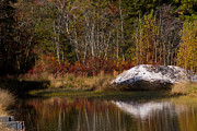 Cranberry Framed Prints - Autumn Reflections in the Pine Barrens Framed Print by Janet Hutton