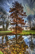 Antique Digital Art Prints - Autumn reflections. Print by Nathan Wright