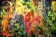 Phyllis Meinke - Autumn Reflections