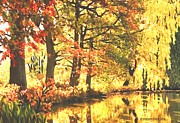 SophiaArt Gallery - Autumn Reflections