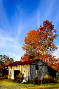 Tin Roof Prints - Autumn Remembered in North Georgia Print by Mark E Tisdale