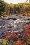 New Hampshire Fall Foliage Framed Prints - Autumn River Framed Print by Joann Vitali