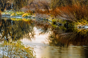 Reflections Of Trees In River Posters - Autumn River Reflections Poster by Brett Haarmann