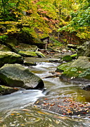 Meander Prints - Autumn River Print by Robert Harmon