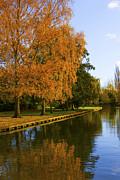 Svetlana Sewell - Autumn River