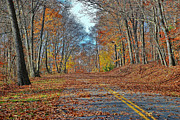 Seren Prints - Autumn Road Print by Allen Beatty