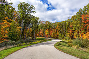 Autumn Scene Prints - Autumn Road Print by Bill Tiepelman