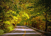 Fall Road Posters - Autumn Road Poster by Carol Groenen