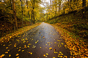 Keith Allen - Autumn Road