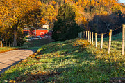 Red Barns Photo Prints - Autumn Road Morning Print by Bill  Wakeley