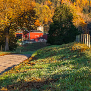 New England Farm Photos - Autumn Road Morning Square by Bill  Wakeley