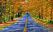 Diane E Berry - Autumn Road Oneida...