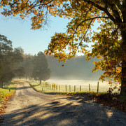 Dirt Roads Photos - Autumn Road Square by Bill  Wakeley
