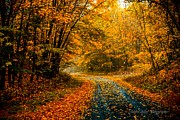 Jahred Klahre - Autumn Road With...